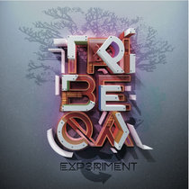 Experiment cover art