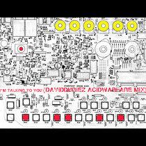 Josh Wink - Talking To You (David Duriez Acid Warfare Remix) [2019 Remastered] cover art