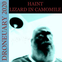 Lizard in Camomile cover art