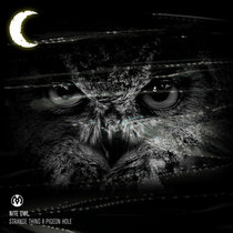 Nite Owl cover art
