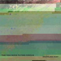 Shuffling Dust cover art