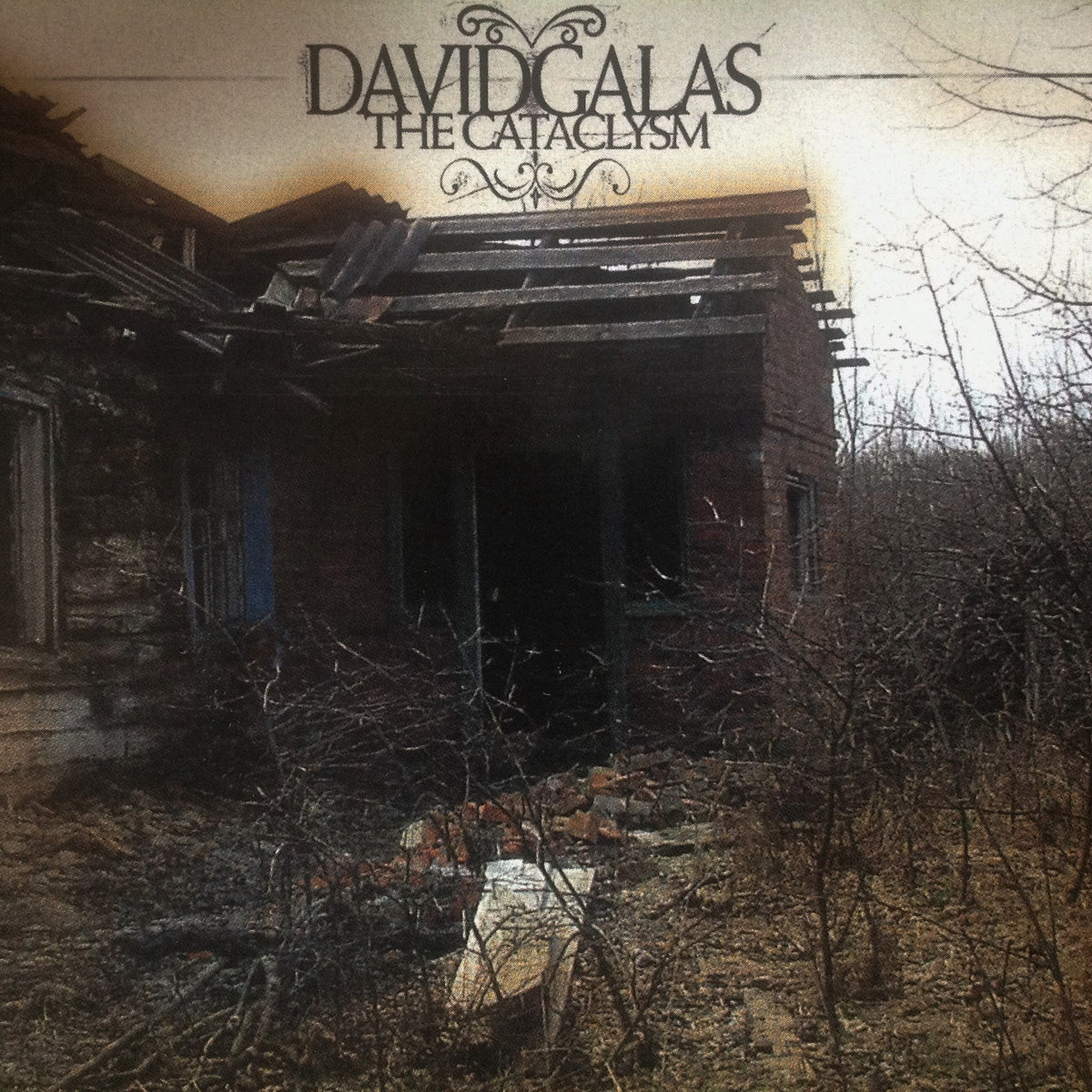 Alone We Will Always Be David Galas