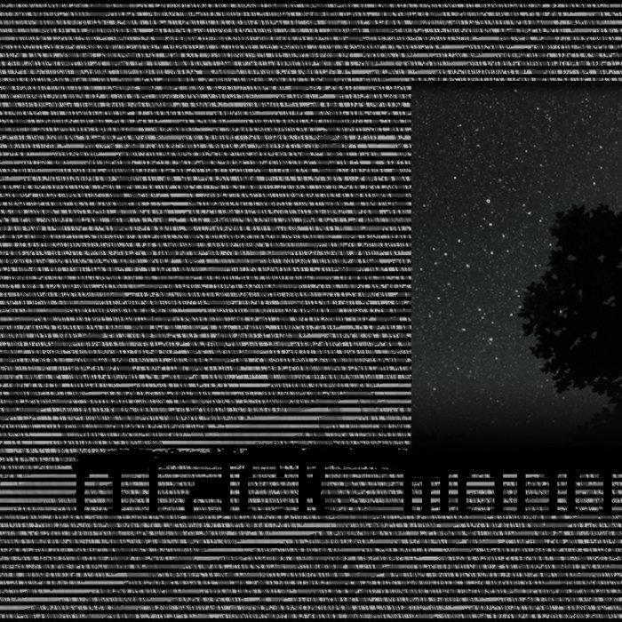 black ___