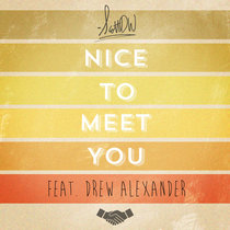 Nice To Meet You cover art