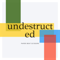 Undestructed cover art