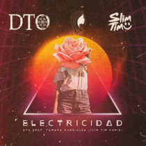 Electricidad feat. Tamara Rodriguez (Slim Time Remix) Extended Mix - House Music cover art