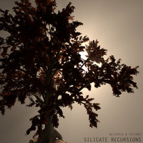 Silicate Recursions cover art