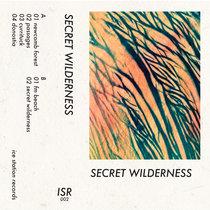 Secret Wilderness cover art