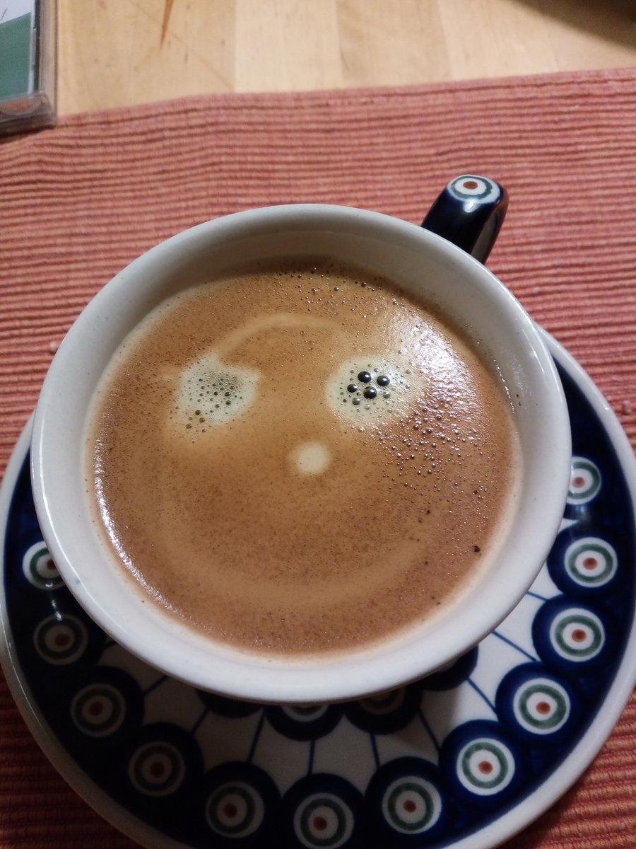 single cafe kassel