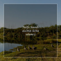 Aloha 'Aina, Volume 5: Field Recordings of Hawaii cover art
