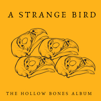 The Hollow Bones Album by A Strange Bird