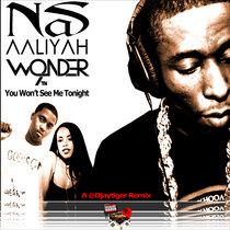 Nas, Aaliyah and 9th Wonder - You Won't See Me Tonight (A Djaytiger Remix) cover art