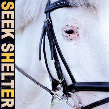 Seek Shelter main photo