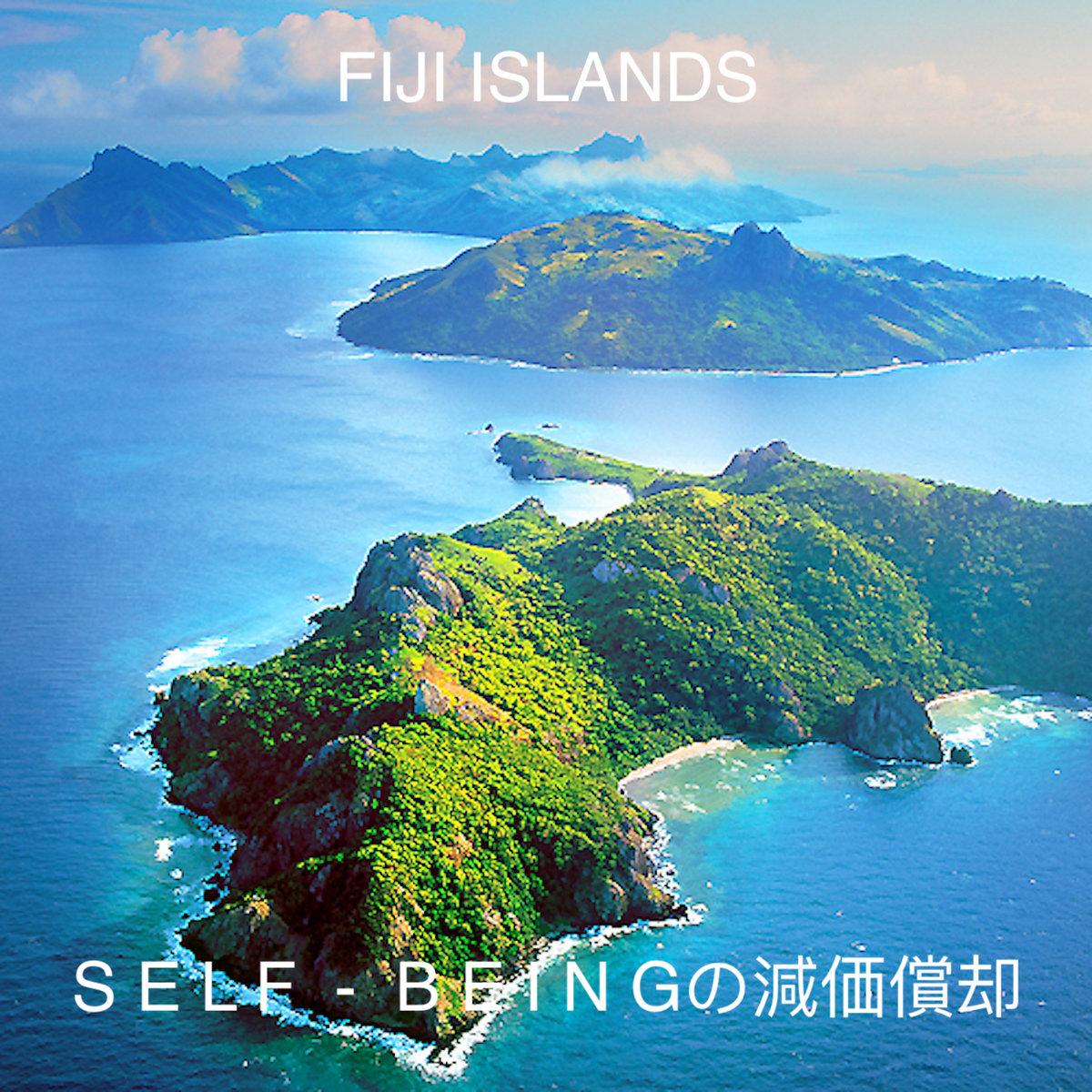 Fiji Islands S E L F B E I N Gの減価償却