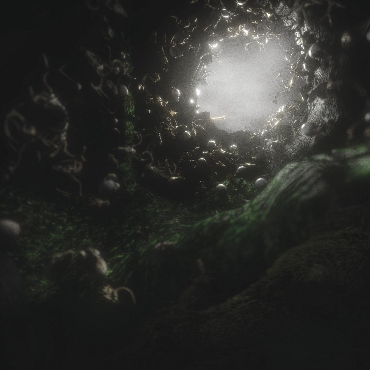 owl cave broken teeth review le scribe du rock
