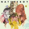 Natureboy Cover Art
