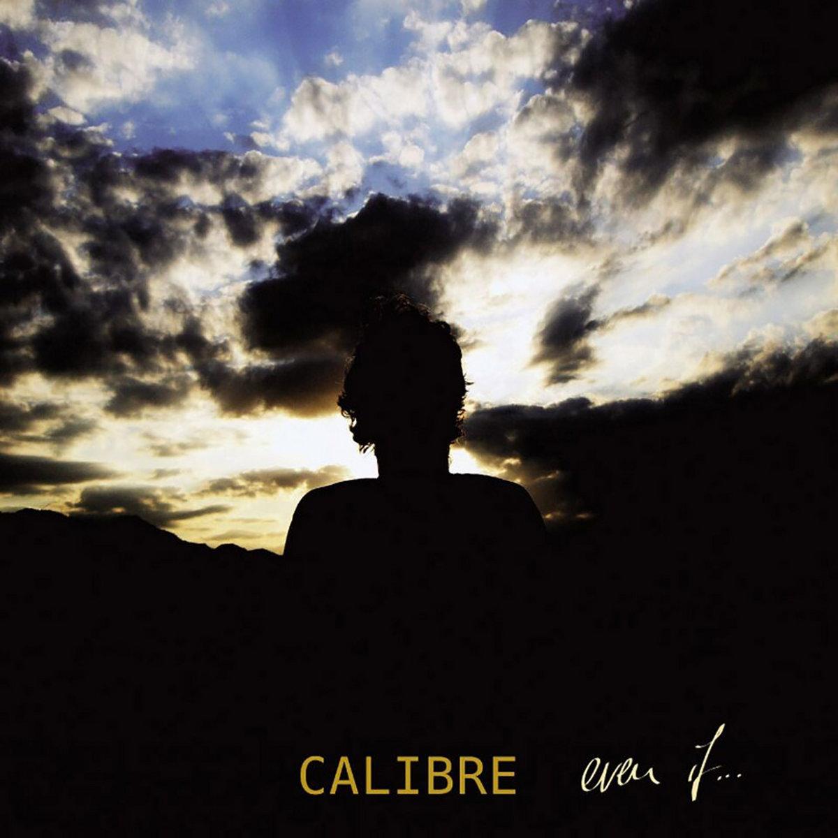 Broken | Calibre