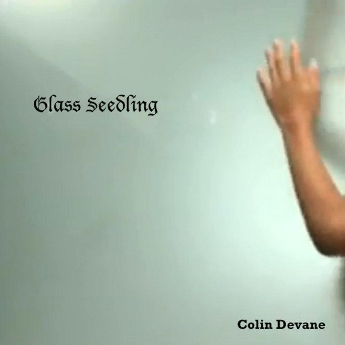 Glass Seedling cover art