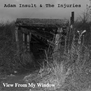 View From My Window by Adam Insult & The Injuries