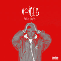 Voices (Single) cover art