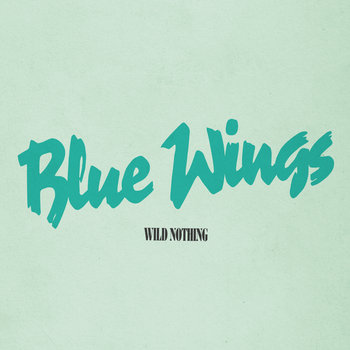 wild nothing nocturne torrent