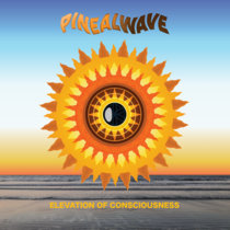 Elevation of Consciousness cover art