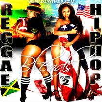 Djaytiger's Reggae Hiphop Blends Vol 2 cover art