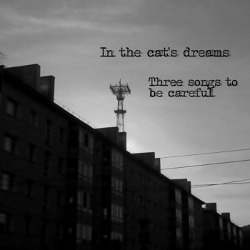 cat dreaming city