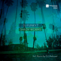 Shady Worms (incl. DJ Aakmael Remix) cover art
