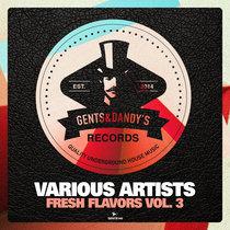 VA - Fresh Flavors Vol. 3 cover art