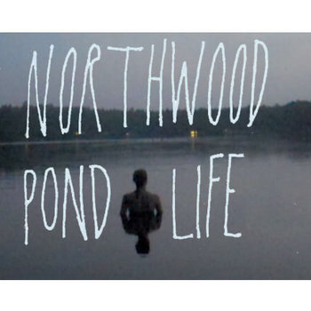 Pond Life by Northwood