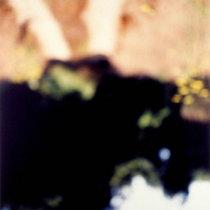 noground cover art