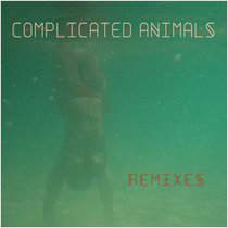 Phoenix (Bumbac Joe remix) cover art