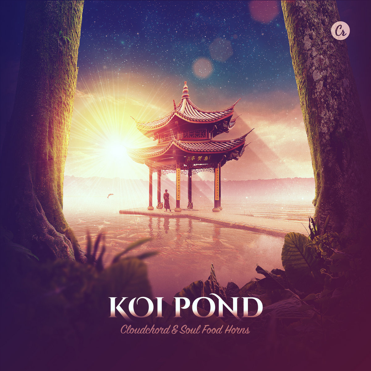 pond discography 320