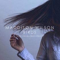 Maddison Wilson - Birds (Dan Villalobos Remix) cover art