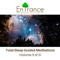 Deep Sleep Guided Hypnotic Meditations #5 cover art