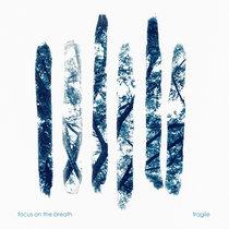 Fragile cover art