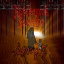 Nocturnal Sunrise cover art