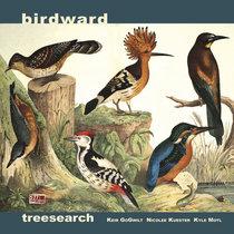 Birdward cover art