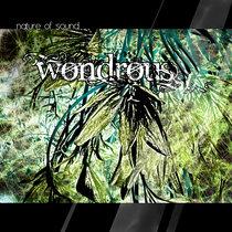 wondrous cover art