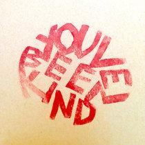 You've Been Kind (Bird Radio / Bones & the Aft) cover art