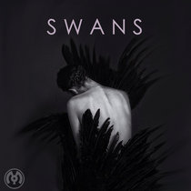 SWANS cover art