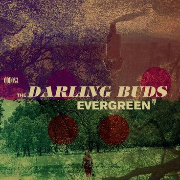 Evergreen EP main photo