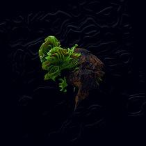 Duas Vozes cover art