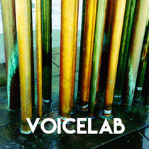 Voicelab cover art
