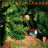 photosyntheses Cover Art