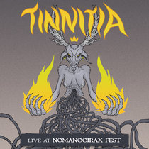 Live at NomaNooirax Fest cover art