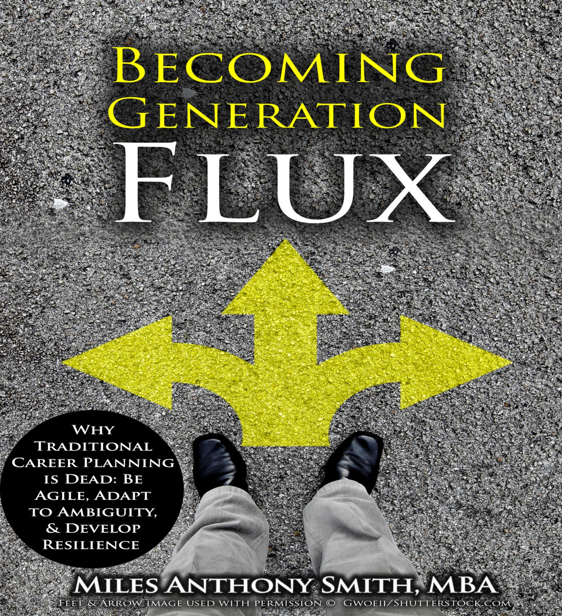 career transition audiobook sample becoming generation flux career transition audiobook sample becoming generation flux successful career planning means riding wave of change