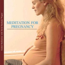Meditation for Pregnancy - Guided Meditations with David Harshada Wagner cover art