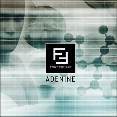 Adenine main photo